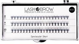 Perfumería y cosmética Pestañas postizas individuales - Lash Brown Premium Flare Silk Lashes Spectacular Short
