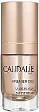Perfumería y cosmética Crema antiedad para contorno de ojos con aceite de uva - Caudalie Premier Cru Eye Cream