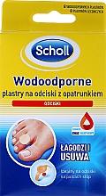 Perfumería y cosmética Parches para callos resistentes al agua - Scholl Waterproof Bandages