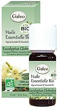 Perfumería y cosmética Bio aceite esencial de eucalipto blanco 100% - Galeo Organic Essential Oil Eucalyptus Globulus