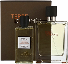 Perfumería y cosmética Hermes Terre dHermes - Set (eau de toilette/100ml + gel de ducha/80ml)