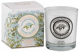 Perfumería y cosmética Panier Des Sens Sea Fennel - Vela aromática, magnolia champaca