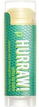 Perfumería y cosmética Bálsamo labial eco con aceite de coco, menta y limoncillo - Hurraw! Pitta Lip Balm Limited Edition