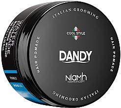 Perfumería y cosmética Pomada para barba y cabello - Niamh Hairconcept Dandy Extreme Shine Water Pomade