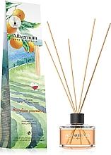 Perfumería y cosmética Ambientador Mikado, naranja - Allverne Home&Essences Diffuser