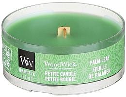 Perfumería y cosmética Vela aromática, hoja de palmera - Woodwick Petite Candle Palm Leaf