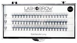 Perfumería y cosmética Pestañas postizas individuales - Lash Brown Premium Flare Silk Lashes Spectacular Long