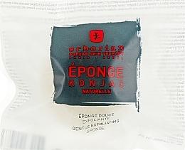 Perfumería y cosmética Esponja Konjac exfoliane natural - Erborian Konjac Sponge