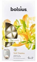 Perfumería y cosmética Cera aromática, mango y bergamota - Bolsius True Moods Feel Happy Mango & Bergamot