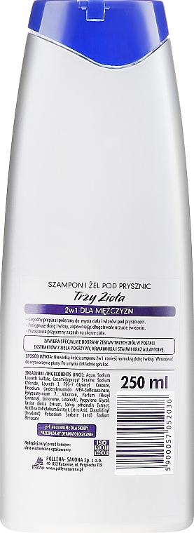 Champú & gel de ducha refrescante con extracto de ortiga, milenrama & salvia - Pollena Savona Three Herbs Men 2in1 Shampoo & Shower Gel — imagen N2