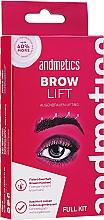 Perfumería y cosmética Andmetics Brow Lift Kit - Set fijador de cejas (pegamento lifting/7ml + loción permanente/5ml + loción fijadora/5ml + cepillo/1ud.)