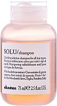 Perfumería y cosmética Champú antiresiduos con extracto de trigo - Davines Solu Shampoo