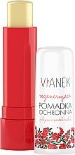 Perfumería y cosmética Bálsamo labial con extracto de aceite de semilla de frambuesa - Vianek Lip Balm