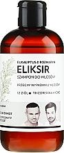 Perfumería y cosmética Champú profesional anticaída del cabello con extracto de 12 hierbas - WS Academy Eukaliptus & Rozmaryn Elixir Wash